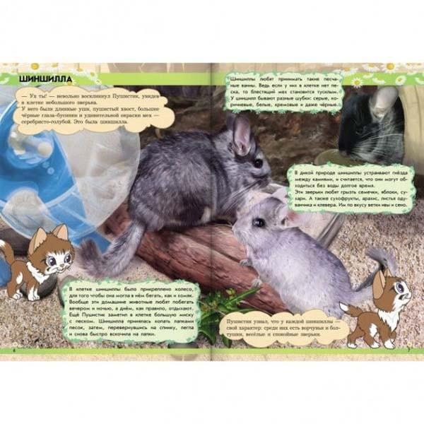 """Детская энциклопедия """"Мир животных. От хомячка до динозавра"""", Ранок"""
