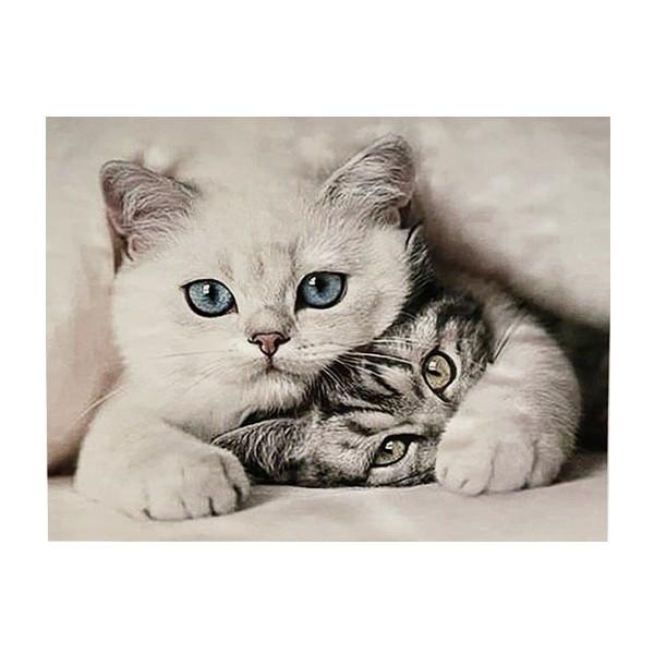 "Алмазная мозаика ""Два кота"", WB2721"