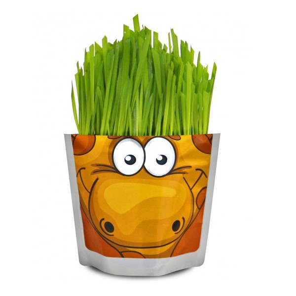 "Набор для выращивания растений ""Сафари. Жираф"", Happy Plant"